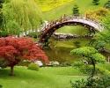 Így alakítsunk ki japánkertet a saját kertünkben